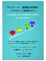 Paradigm Developmental Model of Treatment Japanese Edition cover